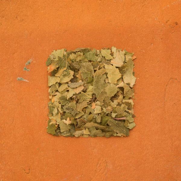 Birch leaves organic cut