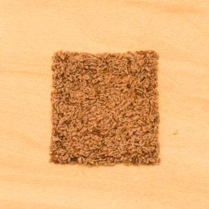 Psyllium seed husks BIO